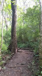 Trails & Roads