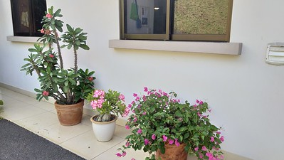 My Gardens, Roca Verde, Atenas, Costa Rica