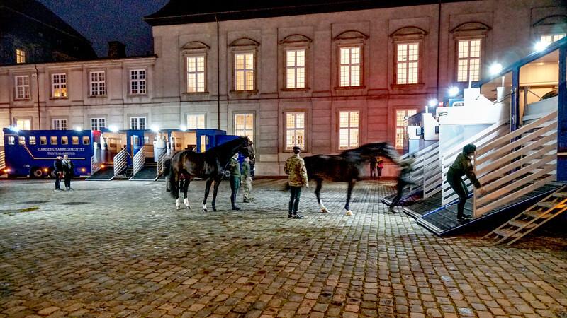 Copenhagen - Horses