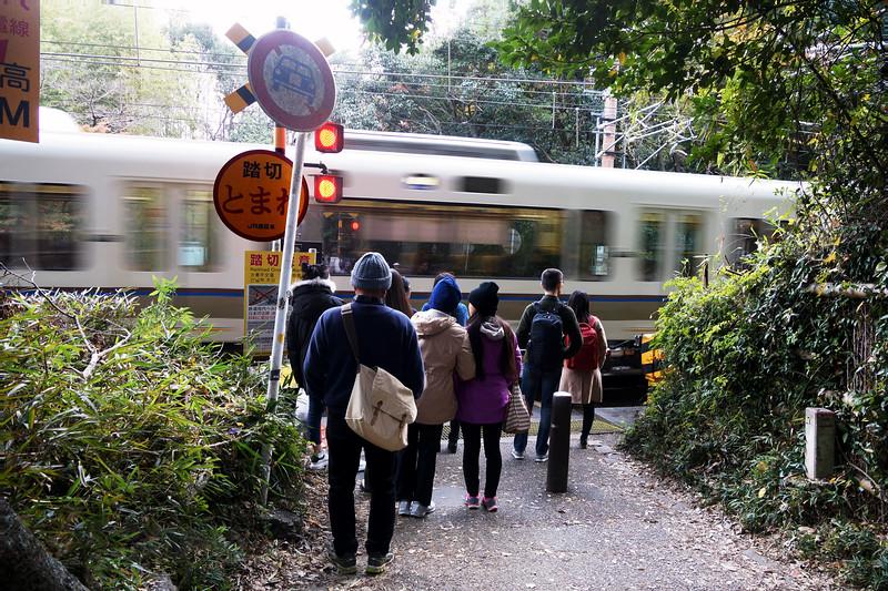 Arashiyama Forest - Train Crossing