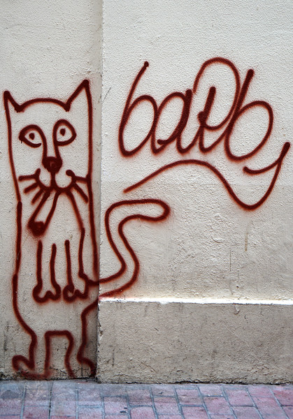 Cat - Calle Don Pedreo Atares