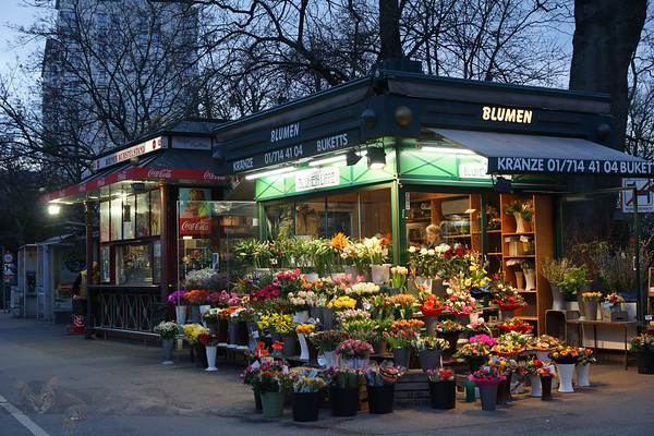 Florist Stall in Vienna