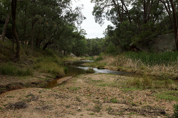 Goulburn River Nat. Park - The Drip Gorge