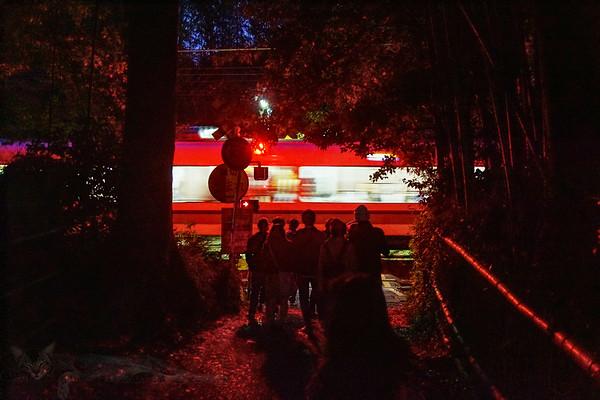 Arashiyama Forest - Train Crossing at Night