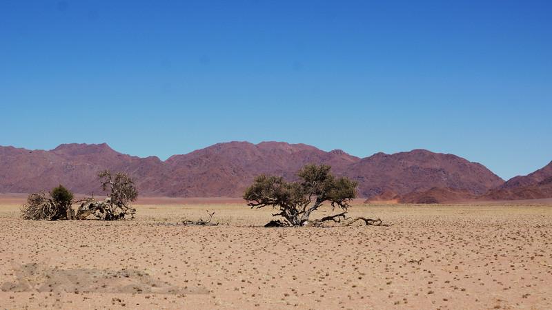 Desrt Panorama, Namibia