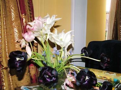 2007 RHS Chelsea Flower Show