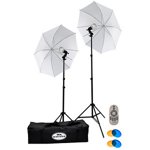 2 LED Kit 500 Watts Carton-PR
