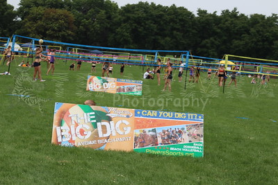20160723 Chicago Field Day-The Luau Grass Volleyball Tournament