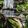 Disney's Animal Kingdom - Pangani Forest Exploration Trail