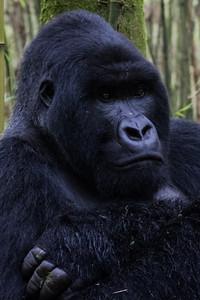 Sbrand_Africa_Rwanda_7236