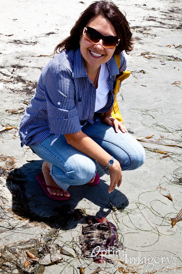 Olga shows us one of the black jellyfish which had invaded the waters a week or so prior.