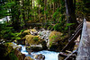 See why this place, so easy and quick to get to once you exit your car, is so difficult to just drive by?  Where else can you be in such lush forest, along a refreshing mountain stream, just 2 minutes after you close your car door?