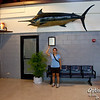 Apparently we have some large beasts off our shore.  This one hangs at the Tinian Airport.
