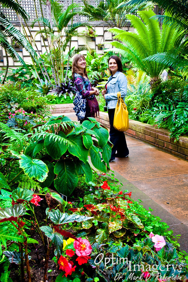 NOW we are inside the Botanical Garden!