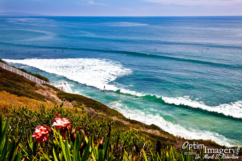 Up on a bluff overlooking the Pacific Ocean on the Self-Realization Fellowship grounds in Encinitas.
