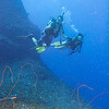 John and Dawn float above the whip coral.  Does sound kinky, doesn't it!?