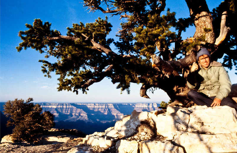 We had to miss episodes of LITTLE HOUSE ON THE PRAIRIE, opting instead to sit under old trees on the North Rim of the Grand Canyon (a highly recommended place, by the way -- although it has likely changed a bit since 1978).