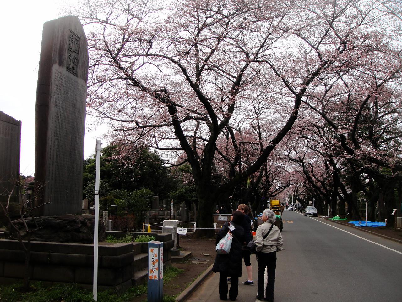 large tombstones