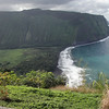 Didn't spend much time on the northeast side of Big Island, but it is rugged and beautiful and will be fun someday.