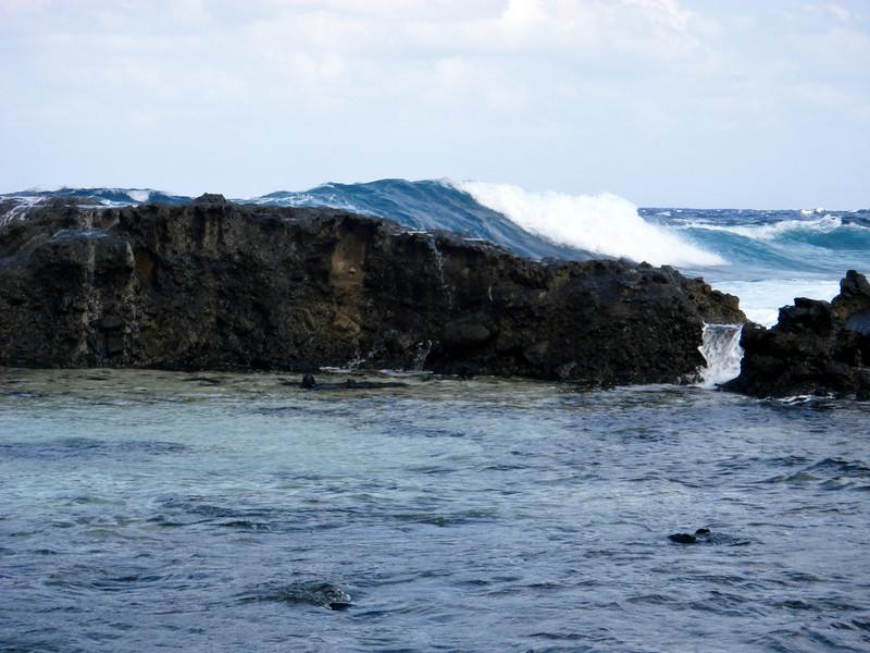 same reef