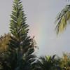 Always a Rainbow~~~~