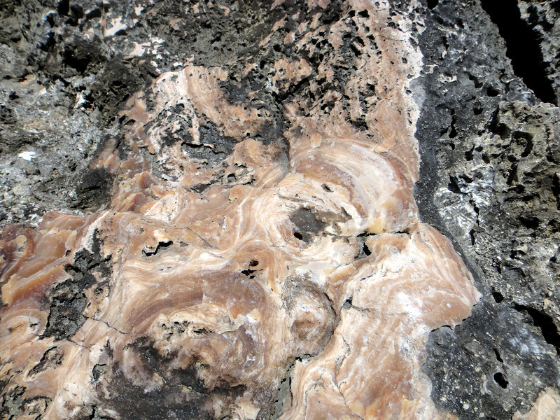 travertine in with the lava and coral