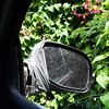 and the mirror is STILL hangin' on.  This Explorer has been down a lot of grown-over narrow roads on Saipan!