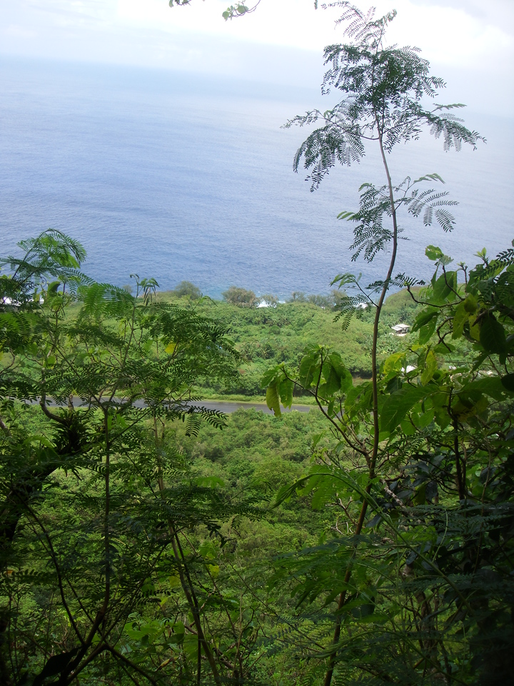 Beautiful little scenic lookouts over the cliff along the way.