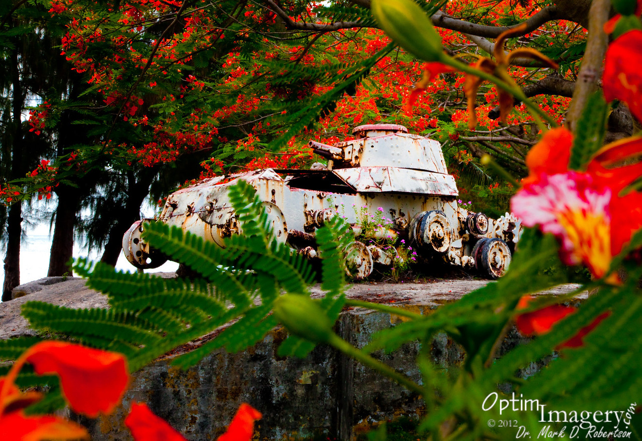 WWII Japanese Army tank near Beach Road.