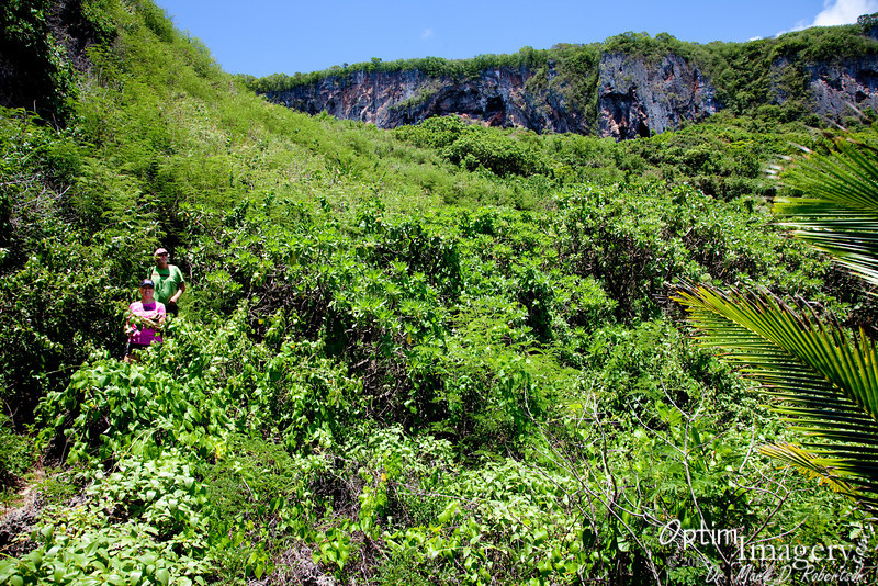 After a nice descent from the road, the trail opens to a nice, open limestone (old coral) coastline.