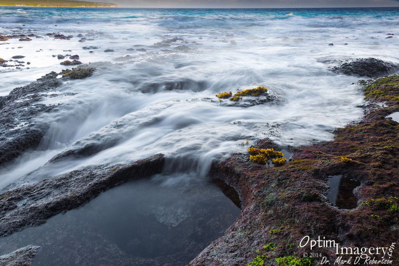The very low tide allowed us to get out to where the wave action swept up into the sinuous little canyons.