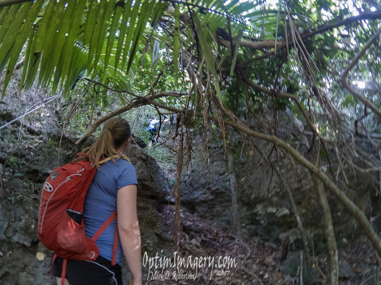 Matt explores a steep ravine.