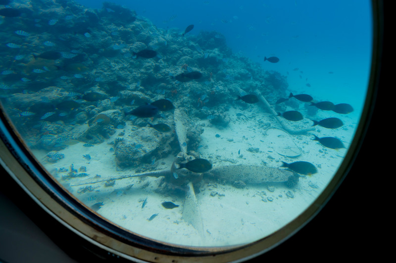 Saipan was the scene of some of the most intense fighting -- including air fights -- of WW II. There are reminders of that scattered throughout our beautiful lagoon, and your DEEPSTAR voyage takes you by some.