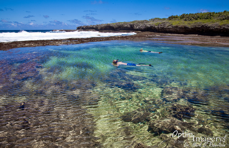 I've been told that the primary snorkeling spot here at Marine Beach is actually an old bomb crater from WWII.
