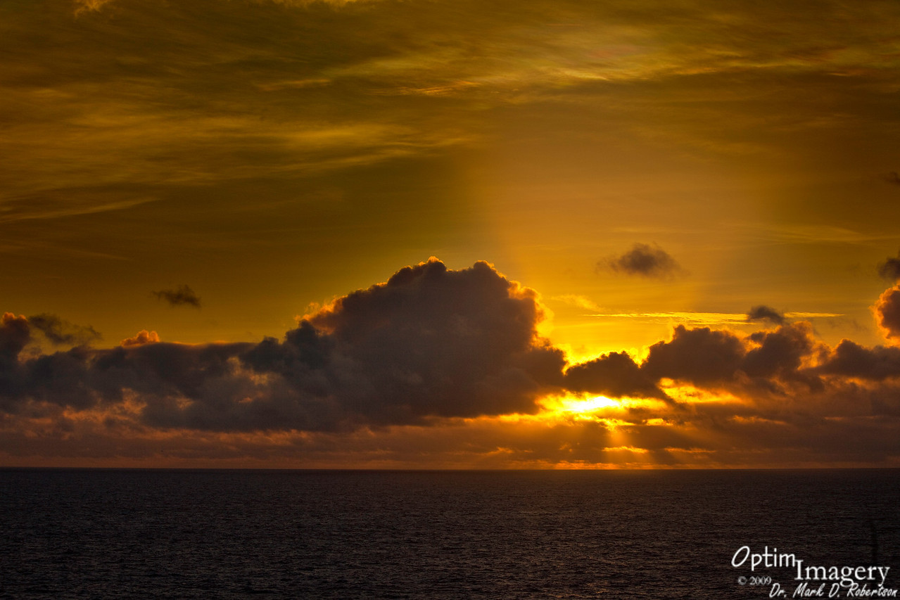 Shifting of golden hues as the sun climbs into the sky.