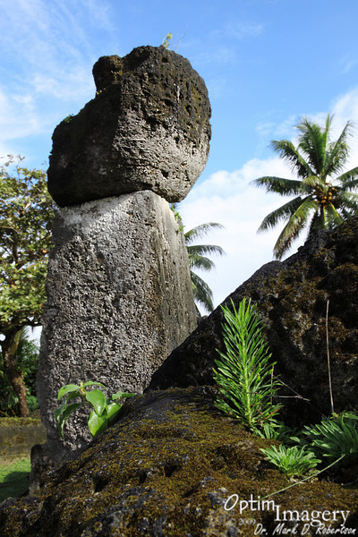 The uprights of the House of Taga are about 16 feet tall.  There are twelve latte here in 2 rows of 6.  Four were for corners, and the rest were for support along the length of the building which rested on the top.  These stones were quarried by hand and transported about a mile or so from Taga Beach.  Chamorro were utilizing latte construction around 1100 AD, and apparently still had some latte buildings at the time of Spanish discovery in the 1600's.  Apparently only the higher caste could live in latte houses.  Commoners had wooden huts built on the ground.  I have never seen an authoritative date for when House of Taga was built, but I assume it was sometime between 1100 and 1600.<br /> <br /> I have also never heard nor read an authoritative account for how the stones were put into place.  How the cap stones were placed on top is, to me at least, quite a mystery.