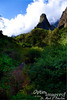 "Now we are at the Iao Needle (that's a capital I on Iao, not an ""L"").  This is a sacred sight which was considered a phallic symbol by the ancients.  It was also the scene of one of the most decisive battles for control of Hawaii, where King Kamehameha defeated the armies of Maui."