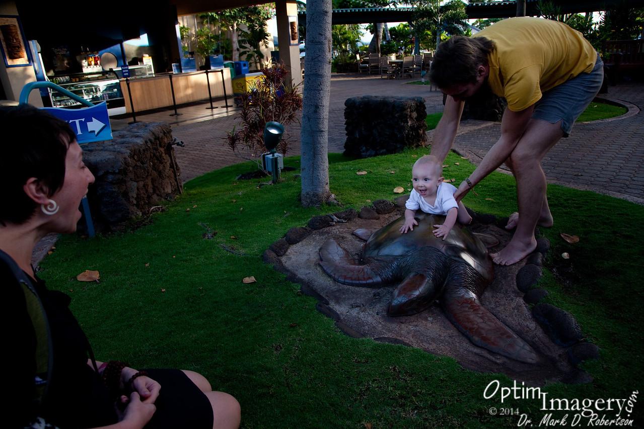 """""""Riding"""" a turtle statue prior to leaving the aquarium."""