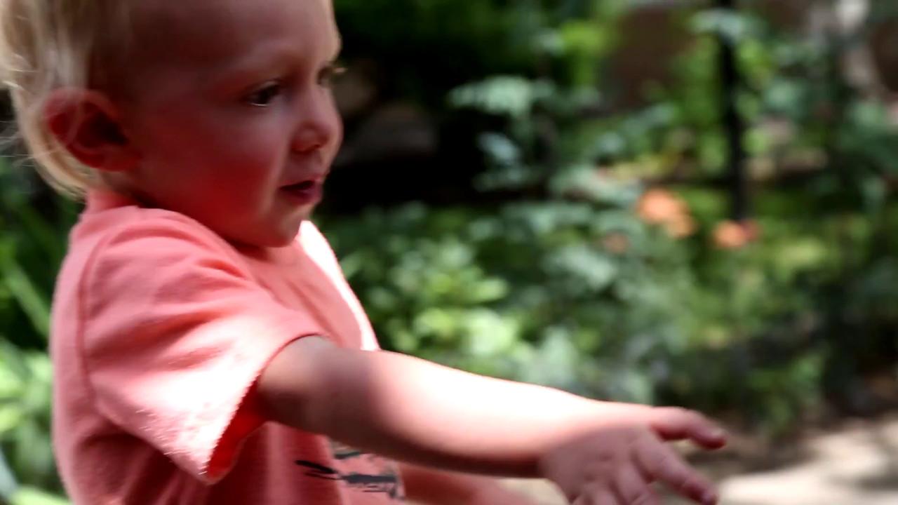 VIDEO:  FUN IN TAOS