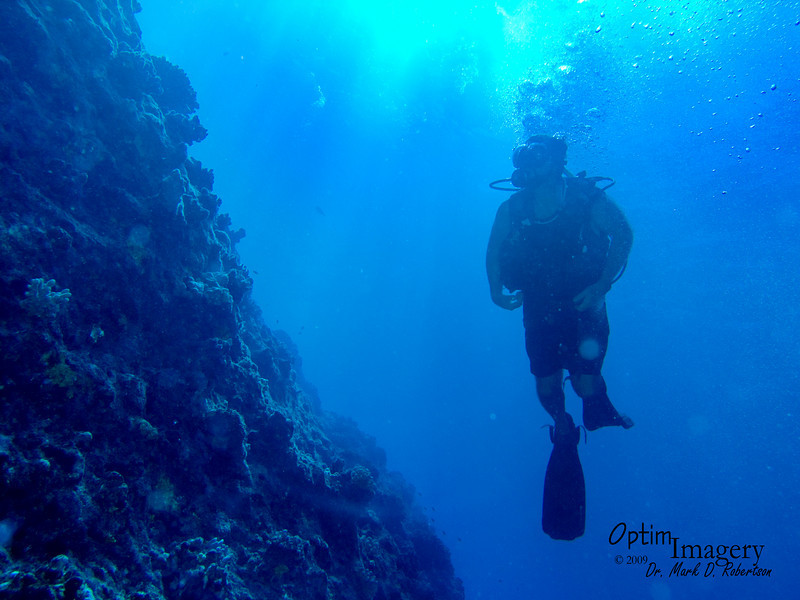 Bill's FIRST Grotto dive!  Here we have just exited the Grotto and are along a wall to the west of Hole #1.