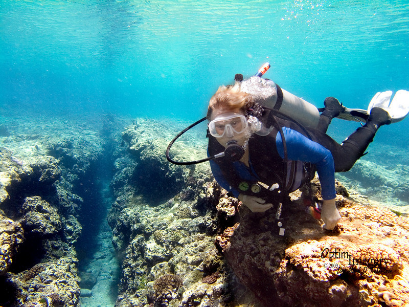 OK:  Time to head back.  This is it for the weekend of diving.  Hope y'all enjoyed it!
