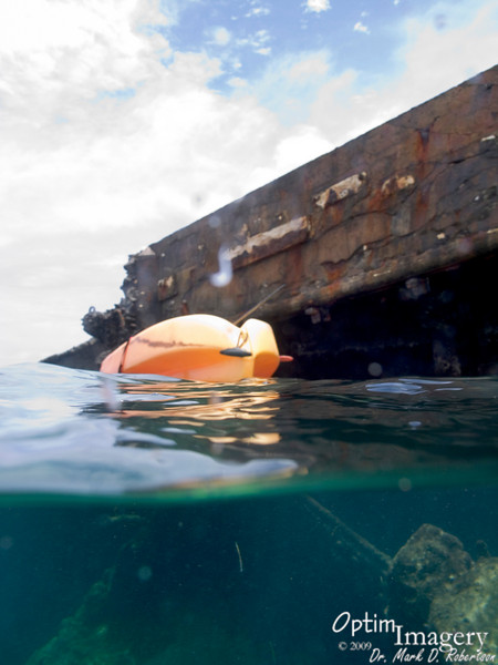 """For the past several years, I have wanted to see what was out at the old """"Tanker,"""" the barge south of Managaha.  Usually the waves, currents, and wind are bad enough to scare me out of going.  Today, however, everything seemed quite calm, so I loaded up my snorkel stuff and camera and struck out on my kayak."""