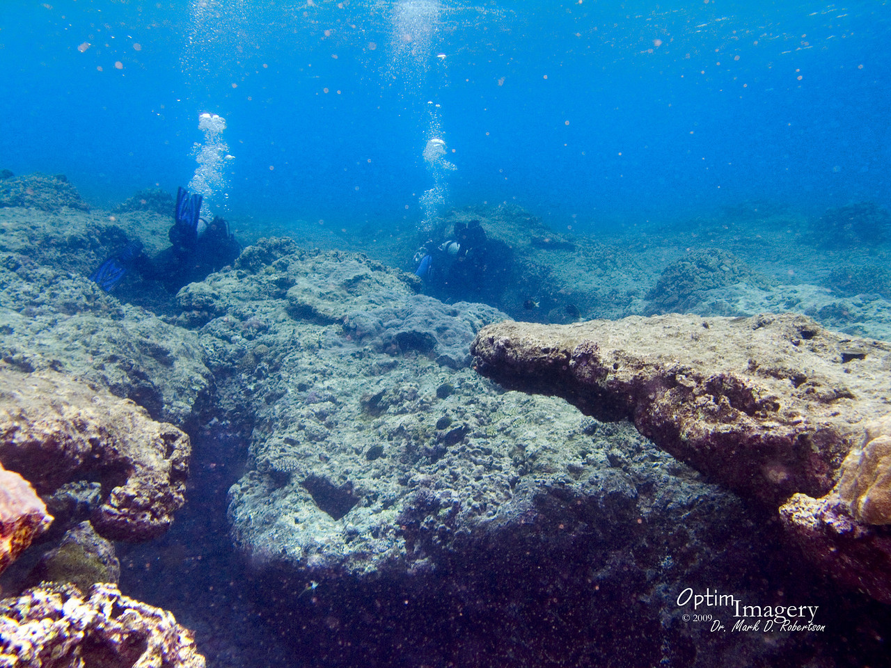 As you approach the Lagoon reef from the flat area, there are several of these interesting crevasses.  As with the shallows in the first part of this album, this area is usually a very uncomfortable area to dive due to heavy surge.  However, on this dive it was downright relaxing.