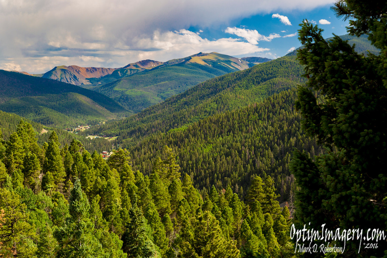 VALLEY OF THE PINES FROM THE OLD RED RIVER PASS