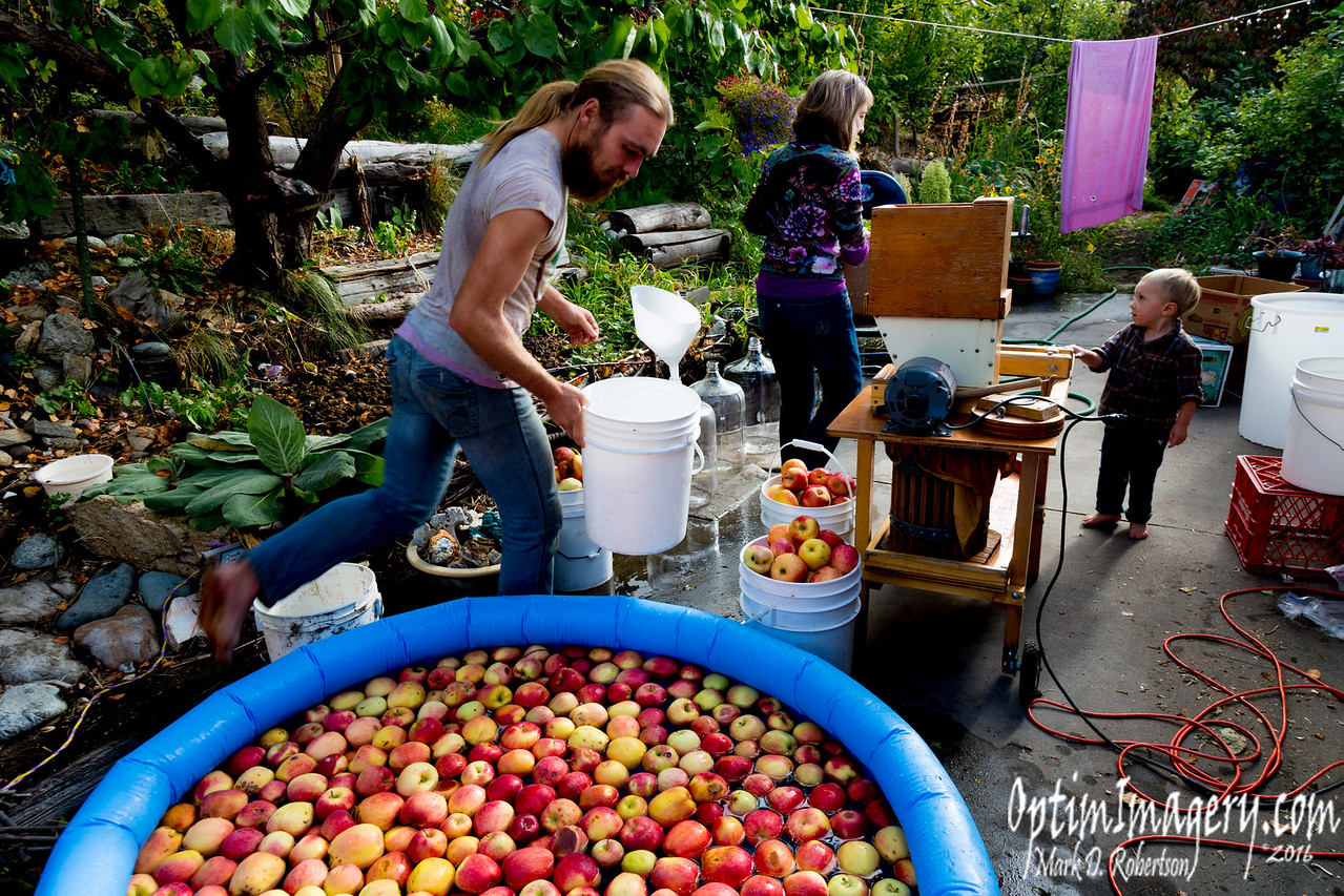 TIME TO PRESS APPLES