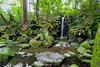 NARITASAN SHINSHOJI TEMPLE WATERFALL