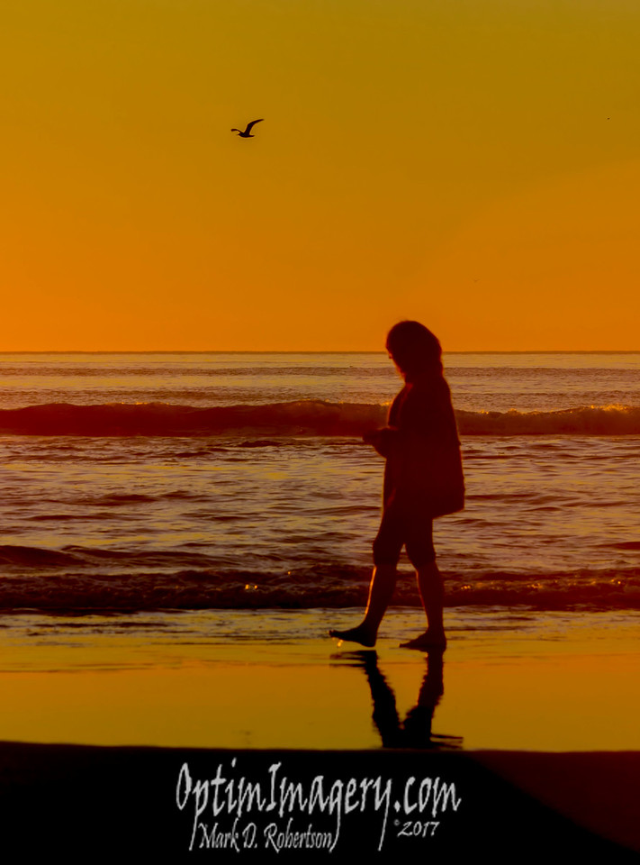 BEV AND GULL AT SUNSET, CANNON BEACH, OR