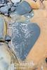 HEART IN THE ROCK