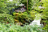 Along a picturesque loop walk through Ketchikan.