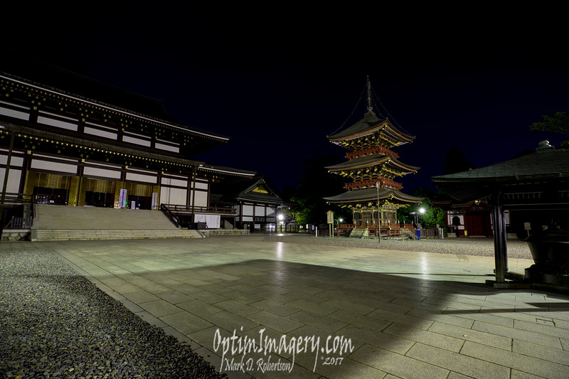 GREAT MAIN HALL (left)  AND THREE-STORY PAGODA (AND GHOST CAT)